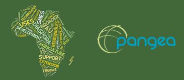 Une-ONG-environnementale-defend-les-biocarburants-pour-l-Afrique